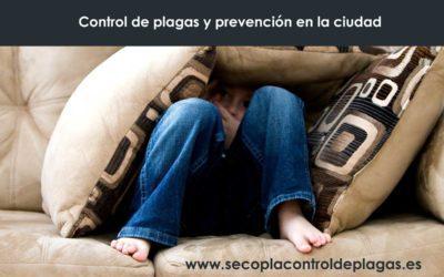 Prevención y control de plagas en la ciudad y la necesidad de su control.